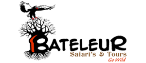 Bateleur Safaris & Tours